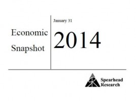 Pakistan's Security snapshot January - February 2014