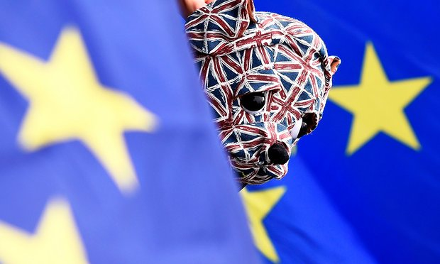 Brexit so complex it could overwhelm politicians, warn senior academics