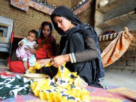 Who is poor in Pakistan today? Raising the basic standard of well-being in a changing society
