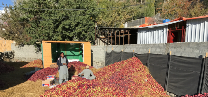 Supporting Gilgit-Baltistan's agriculture sector